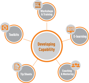 Developing Change Capability